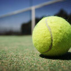 tennis-ball-984611_1280